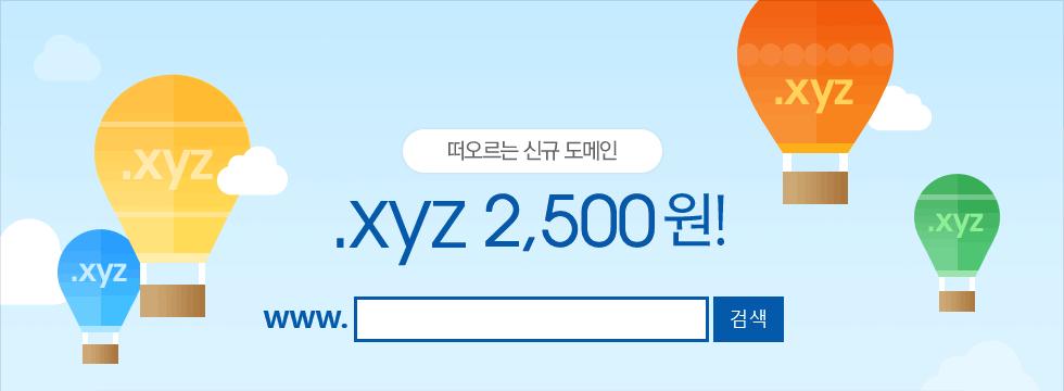 떠오르는 신규 도메인 .xyz 1,900원!
