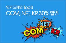 인기 도메인 COM, NET, KR 30% 할인